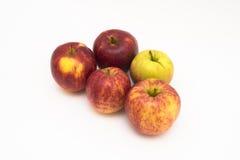 Jonagold äpplen som isoleras på vit Fotografering för Bildbyråer