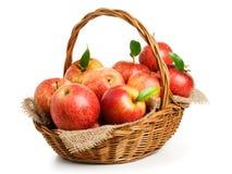 jonagold корзины яблок Стоковое Изображение RF