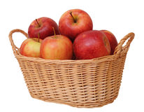 Jonagold apples Stock Image