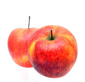 Jonagold apples Royalty Free Stock Photography