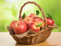 Jonagold Apples in a Basket Royalty Free Stock Photography