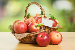 Jonagold Apples in a Basket Stock Images