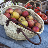 Jonagold apples in a basket Royalty Free Stock Photos