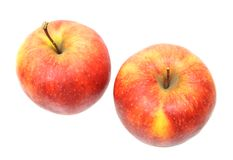 Jonagold apples Stock Photography
