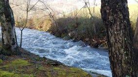 Jonathan Creek North Carolina royaltyfri bild
