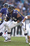 Jonathan Ogden Stock Photos