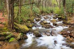 Jones Gap stanu park Południowa Karolina Zdjęcie Stock