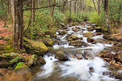 Jones Gap State Park South Caroline Photo stock