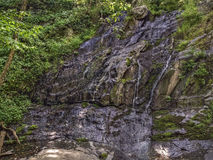 Jones Run Falls, Shenandoah National Park Royalty Free Stock Photo