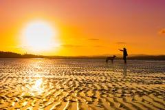Jong aantrekkelijk meisje met haar huisdierenhond bij kust Royalty-vrije Stock Foto's