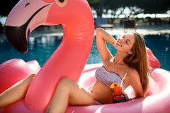 Jong en sexy meisje die pret hebben en op een opblaasbare reuze roze de vlottermatras van de flamingopool lachen met een cocktail Stock Afbeeldingen