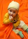 Jong geitje. Stock Fotografie