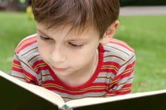 Jong geitje dat een boek leest Stock Afbeelding