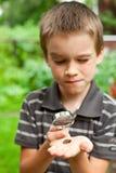 Jong geitje dat slak waarneemt royalty-vrije stock afbeelding
