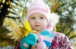 Jong geitje in de herfst Stock Fotografie
