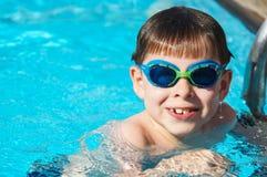 Jong geitje in de pool Stock Afbeeldingen