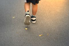 Jong geitje die vooruit aan zongloed lopen op weg met dalings droge bladeren royalty-vrije stock afbeeldingen