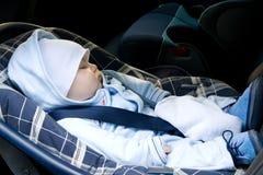 Jong geitje in een zetel van de veiligheidsauto Royalty-vrije Stock Afbeeldingen