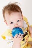 Jong geitje en bal Stock Fotografie