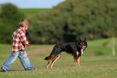Jong geitje en de hond Royalty-vrije Stock Afbeeldingen