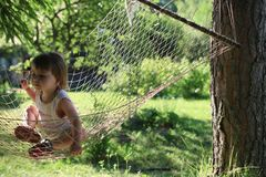 Jong geitje in hangmat op aard Royalty-vrije Stock Fotografie