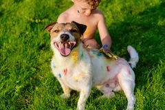 Jong geitje het schilderen met vingers op gelukkige binnenlandse huisdierenhond Stock Afbeeldingen