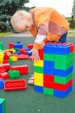 Jong geitje het spelen met kubussen Royalty-vrije Stock Fotografie