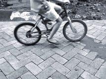 Jong geitje met haar bicyle stock fotografie