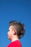 Jong geitje met Mohawk stock afbeeldingen