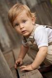 Jong geitje op de houten portiek. Royalty-vrije Stock Afbeeldingen