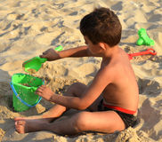 Jong geitje op het strand Stock Afbeeldingen