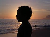 Jong geitje in silhouet Stock Afbeelding