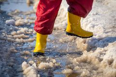 Jong geitjebenen in rainboots die in de ijsvulklei lopen Stock Afbeelding