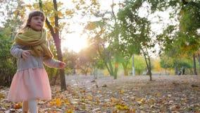 Jong geitjespelen met zeepbels in backlight bij de herfstpark, gelukkige kinderjaren stock video
