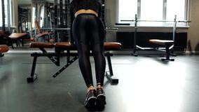 Jong geschiktheids donkerbruin meisje die opdrukoefeningen op een opleidingsbank doen in de gymnastiek Concept sport en gezonde l stock videobeelden