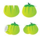 Jong kokosnoten vastgesteld vectorontwerp Royalty-vrije Stock Foto