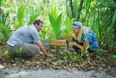 Jong liefdepaar die palm planten Royalty-vrije Stock Foto's
