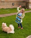Jong meisje dat een bal werpt aan een kleine hond Stock Fotografie
