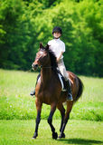 Jong meisje dat een paard berijdt Royalty-vrije Stock Foto's