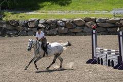 Jong meisje dat een paard berijdt Royalty-vrije Stock Afbeeldingen