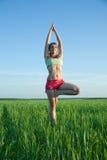 Jong meisje dat yoga doet tegen aard stock foto