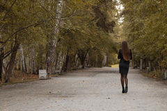 Jong meisje die in de herfstpark lopen Royalty-vrije Stock Afbeelding