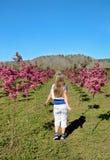 Jong meisje die door weg van bloeiende bomen lopen Stock Fotografie