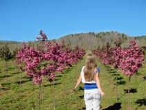 Jong meisje die door weg van bloeiende bomen lopen Royalty-vrije Stock Afbeeldingen