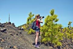 Jong meisje die foto in Pijnboombomen nemen in het Eiland van Tenerife Royalty-vrije Stock Fotografie