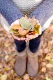 Jong meisje die gele bladeren houden royalty-vrije stock fotografie
