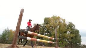 Jong meisje die op baaipaard over hindernis springen stock video