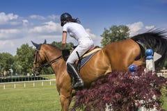 Jong meisje die op horseback springen royalty-vrije stock foto's