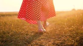 Jong meisje die in rode kleding op weide met de groene langzame geanimeerde video van de grasaard lopen meisje in de gebiedsbenen stock videobeelden