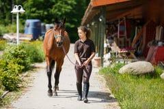 Jong meisje met een paard Royalty-vrije Stock Afbeeldingen